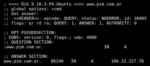 Dirección IP de pim.com.ar